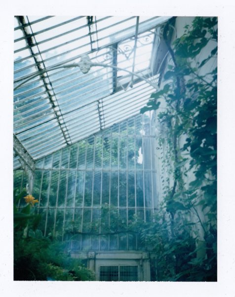 2017.kapplen.Belfast botanic glass house