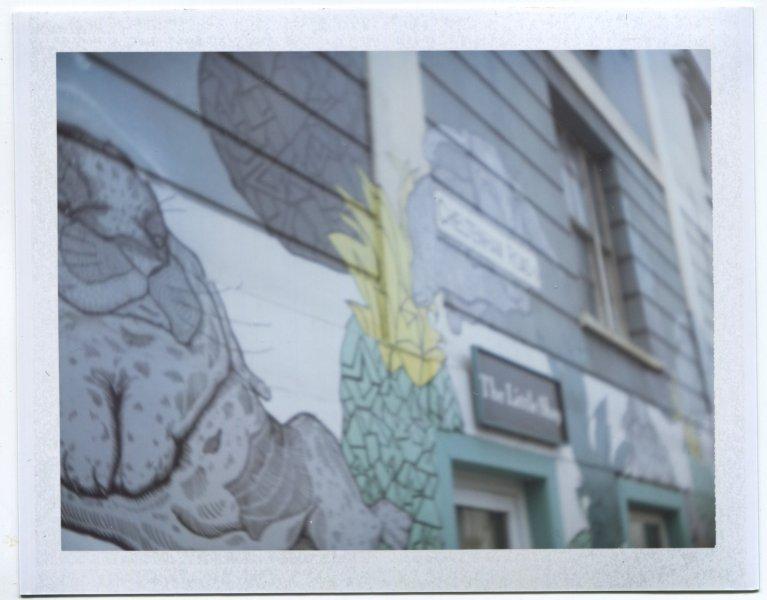 Bristol Graffiti Grey Rabbits